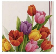 Servilletas Tulipanes colores